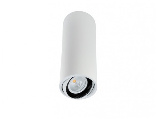 Luk Tube 185 6.2 W DALI - Spot aplicat cilindric ajustabil din aluminiu