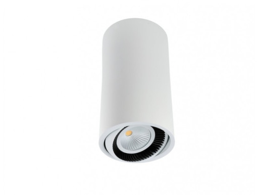 Luk Tube 450 9.3 W DALI - Spot aplicat cilindric ajustabil din aluminiu