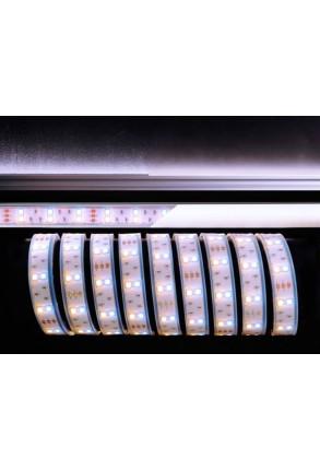 Bandă LED 5050 3000+7000K 12 V
