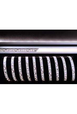 Bandă LED 335 2x60 6500K 12 V III