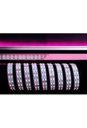 Bandă LED 5050 6000K+RGB 75W 24 V