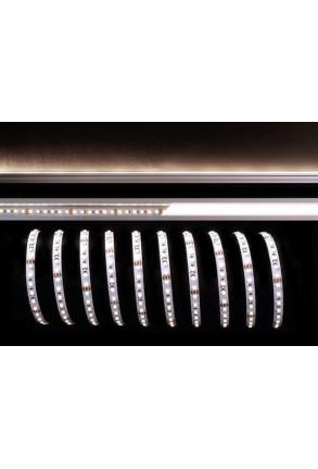 Bandă LED 3528 3000+6500K 12 V