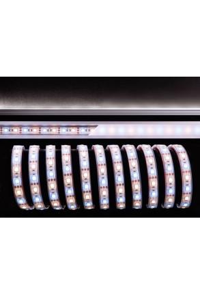 Bandă LED 5050 3000+6500K 12 V