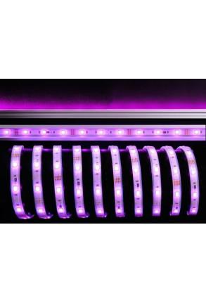 Bandă LED 5050 30 RGB 12 V Silicon