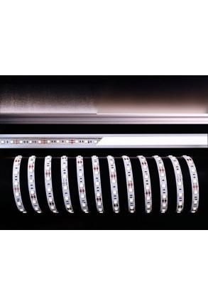 Bandă LED 5050 6000K 12 V