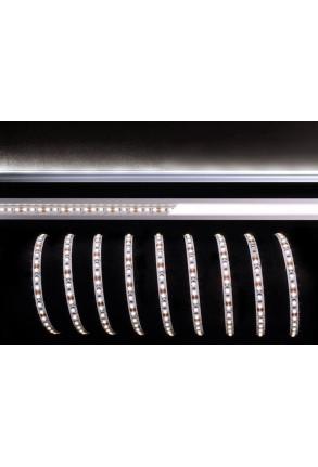 Bandă LED 3528 4000K 12 V