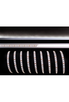 Bandă LED 3528 120 6500K 30W 12 V