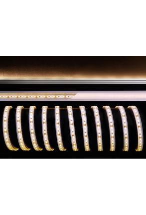 Bandă LED 3528 2700K 12 V Silicon