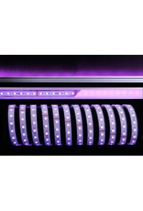 Bandă LED 5050 6200K+RGB 65W 24 V Silicon