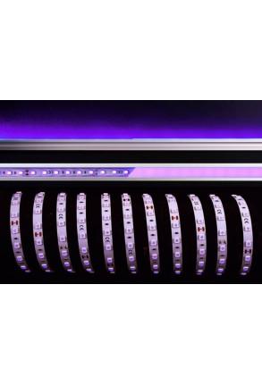 Bandă LED 5050 45W Violet 24 V