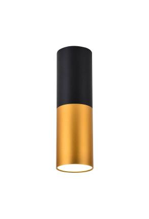 Tube M - Downlight cilindric bicolor