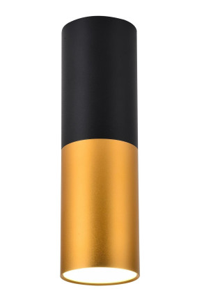 Tube L - Downlight cilindric bicolor